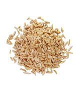 Bulk Pasteurized Blanched Slivered Almonds