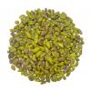 Whole Pistachio Kernels USX1 80% (Pasteurized)